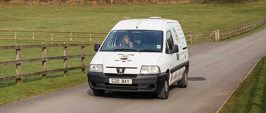 Pet Taxi - Our very own chauffeur service